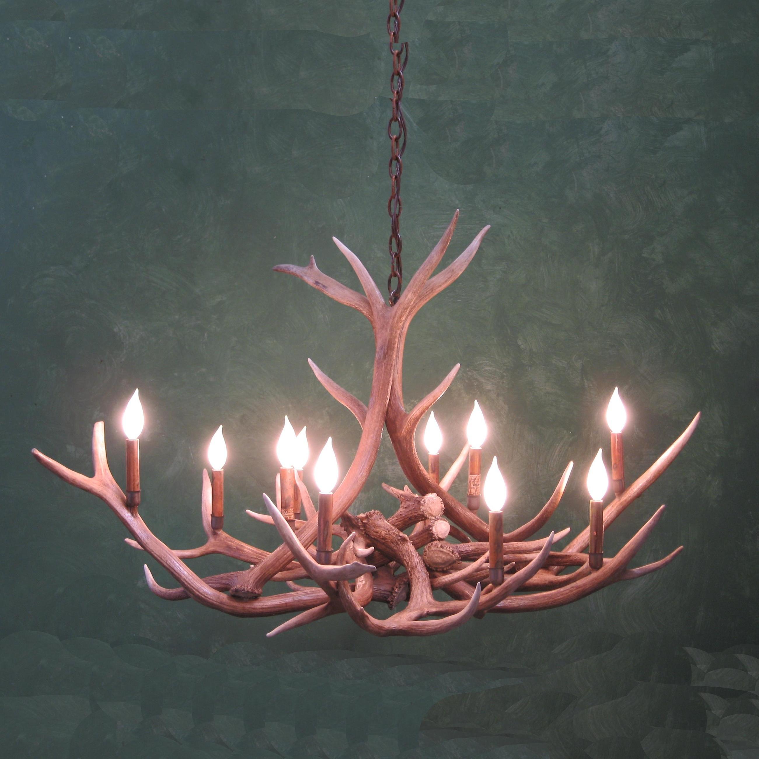 Small oval elk antler chandelier aloadofball Images