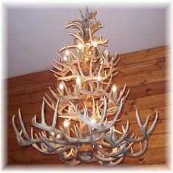 Hidalgo whitetail deer antler chandelier 52 antler 24 light hidalgo whitetail deer antler chandelier 52 antler 24 light aloadofball Image collections